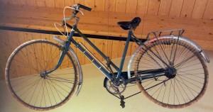 juno bike