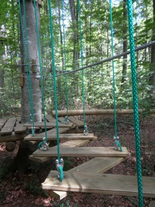 forest-school-climbing-forest-389752_1280