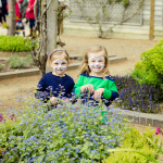 Top 10 Family Events 2015