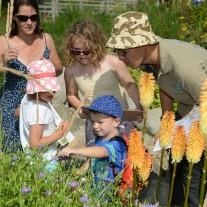 Family 2 garden by Stephen Morris