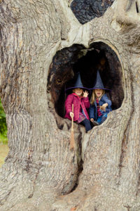 little-witches-in-the-harry-potter-tree-at-blenheim-palace