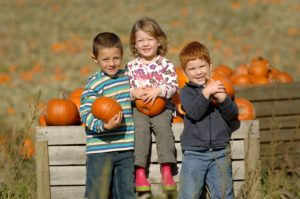 willows-activity-farm-halloween