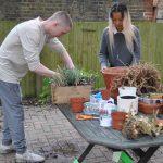 Free Planting kits
