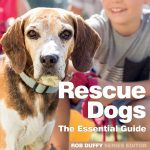 Rescue Dogs The Essential Guide