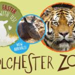 Easter Treats in Essex