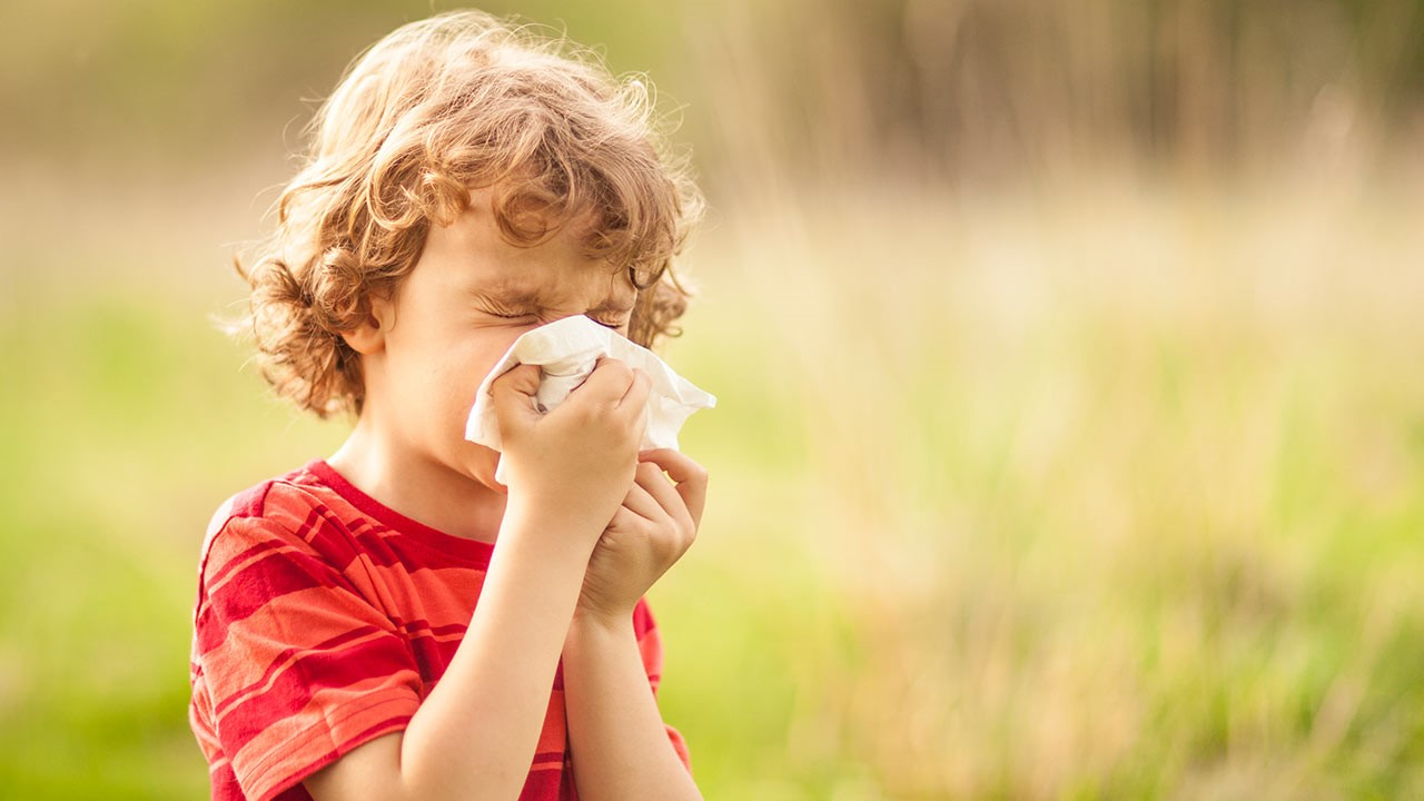 How to relieve your child's hay fever now we are spending more time outdoors